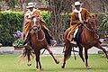 Lima Caballos de Paso 0071.jpg