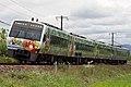 LimitedExpress Nanpu Anpanman Green.jpg