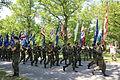 Lippujuhlan päivän paraati 2013 03 veteraanijärjestöjen lippulinna.JPG