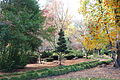Lithia Park - Ashland, Oregon - DSC02736.JPG