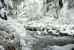 Little Butte Creek in winter