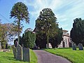 Llanwinio churchyard - geograph.org.uk - 981158.jpg