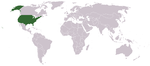 Location on the world map.
