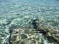 Long Beach - Tinian - panoramio (16).jpg
