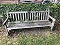 Long shot of the bench (OpenBenches 7348-1).jpg