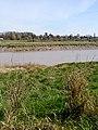 Looking across the river towards Sea Mills - geograph.org.uk - 395562.jpg