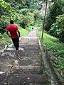 Los Sifones de Orizaba Veracruz 04.jpg