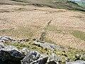 Low wall at the summit of Braich Llwyd - geograph.org.uk - 399875.jpg