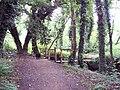 Lye Valley Nature Reserve - geograph.org.uk - 573130.jpg