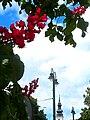 Májový deň mesto Prešov 19 Slovakia1.jpg