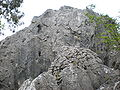 Major Stone Forest SW formation 02.JPG