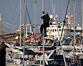 Man on a mast, Bangor Marina - geograph.org.uk - 691698.jpg