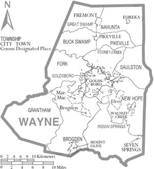 Wayne County, North Carolina - Map of Wayne County, North Carolina With Municipal and Township Labels