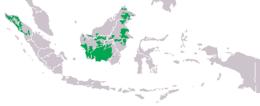 Mapa distribuicao pongo.png