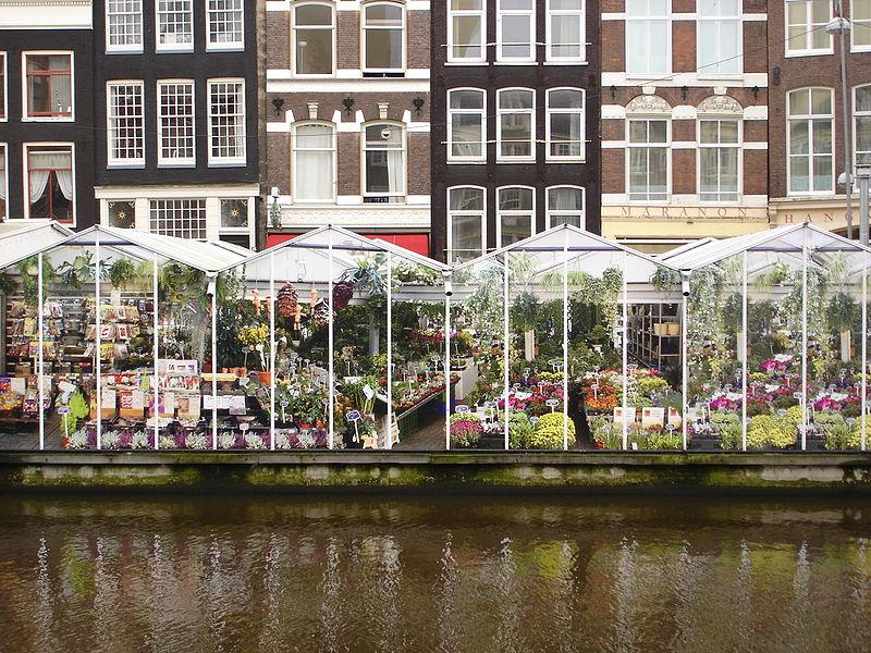 File:Marché aux fleurs Amsterdam.JPG