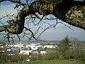 March Denzlingen - Master Season Rhine Valley Photography - panoramio (8).jpg