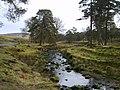 Marshaw Wyre - geograph.org.uk - 1192903.jpg