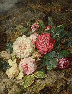 Martha Darley Mutrie - Image: Martha Mutrie Roses