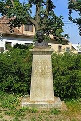 Busta O. Hostinského