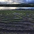 Maze (15525470551).jpg