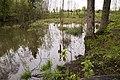 Meļķerti - panoramio (6).jpg