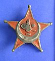 Medal, decoration (AM 774643-1).jpg