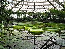 Botanischer Garten Meise Wikipedia