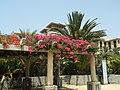 Meloneras, 35100 Maspalomas, Las Palmas, Spain - panoramio (5).jpg