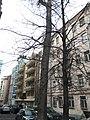 Meshchansky, CAO, Moscow 2019 - 3506.jpg
