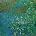 Monet - Irises, 1914-17, 1956.1202.jpg
