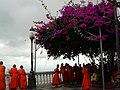 Monjes (Tailandia).jpg