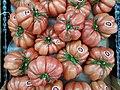 Monterosa tomatoes 2017 C.jpg
