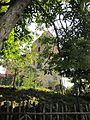 Montopoli in Val d'Arno. Torre detta di castruccio Castracani. 01.jpg