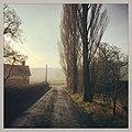 Morning - panoramio (29).jpg