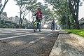 Morning biking.jpg