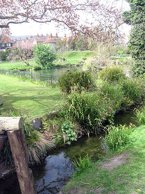 Eastbourne - Bourne Stream running through Motcombe Gardens