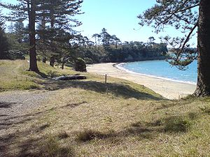 Motuihe Island, Northern Beach West.jpg