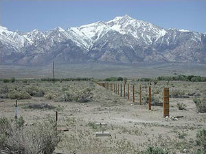 Mount Williamson über Manzanar