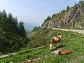 Mount Wutai 五台山 - panoramio.jpg