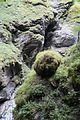 Mountain source (24772324360).jpg