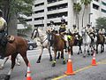 Mounted Police at 2012 RNC occupy protest.jpg