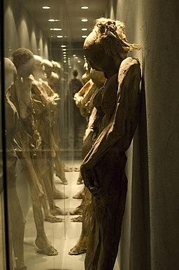 Mummy hall