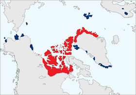 Range map. Blue indicates areas where the muskox has been successfully introduced in the 20th century. Red indicates established range.