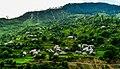 Naran Arial View.jpg