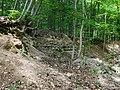 Nationalpark Hainich craulaer Kreuz 2020-06-03 21.jpg
