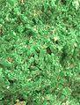 Natrochalcite-rh3-35b.jpg