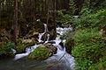 Naturpark Ötztal - Landschaftsschutzgebiet Achstürze-Piburger See - 25 - Wasserfall beim Habicher See.jpg