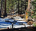 Near San Jacinto Peak, CA 2-7-14f (16324834337).jpg