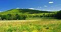 Nescopeck State Park Hillside.jpg
