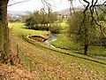 Nettle Dale - geograph.org.uk - 117346.jpg